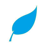 leaf-310555_1280 - 2